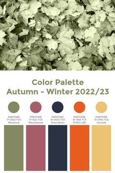 "Trend Color Palette Autumn-Winter 2022/23 ""Primitive"" #color #trends #pantone"