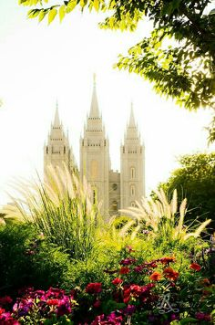 For off use the code YSGVCS Until July 2014 The SLC, Utah LDS, (Mormon) Temple with flowers glowing in a late afternoon son. Utah Temples, Lds Temples, Temple Pictures, Lds Pictures, Sunday Pictures, Church Pictures, Later Day Saints, Beautiful Places, Beautiful Pictures
