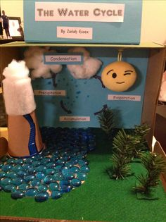 The Water Cycle Shoebox Model
