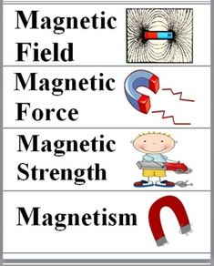 Magnetism Word Wall Cards