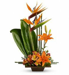 Teleflora's Exotic Grace in Naples FL, Naples Flowers, Inc.