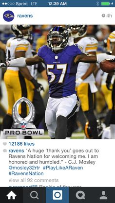 e5fd41e42 60 Best Ravens Nation Baby!!!! images