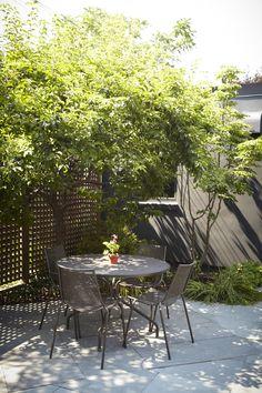Terrazze fiorite | terrazze sui tetti | Pinterest