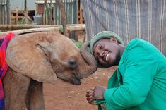 _____The DSWT // Kithaka_____ Kithaka plays with his keeper's hat