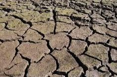 dry cracked earth - Google Search
