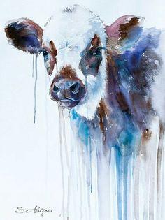 Vaca escocesa.