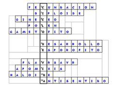 Resultado de imagen para Características y función de los crucigramas.