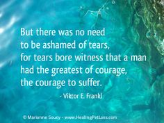 """""""But there was no need to be ashamed of tears..."""" - Viktor E. Frankl"""