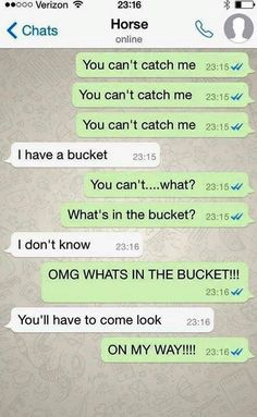 If horses could text - Horses Funny - Funny Horse Meme - - If horses could text Horses Funny Funny Horse Meme If horses could text The post If horses could text appeared first on Gag Dad. The post If horses could text appeared first on Gag Dad. Funny Horse Memes, Funny Horse Pictures, Funny Horses, Funny Animal Memes, Funny Animals, Funny Quotes, Horse Humor, Funny Humor, Horse Puns