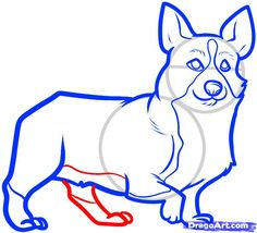 how to draw a corgi, corgi step 6