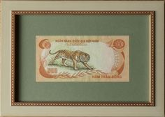 Vietnam 500 Dong Tiger Framed Banknote playing with the green colors in the design