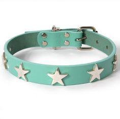 Silver Stars Leather Dog Collar