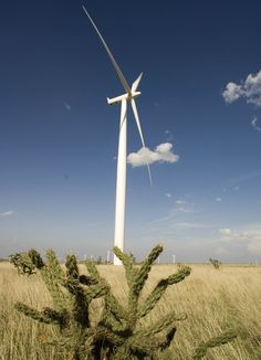 Energy which comes from natural resources such as wind!