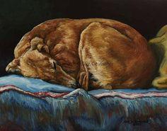 Saluki Greyhound Sight Hound Dog art  8x10 print by Sue Deutscher, $9.99 - suedeutscher.com