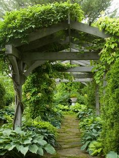 Lush hostas gracing the base of a charming pergola.