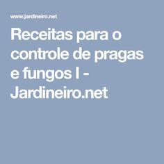 Receitas para o controle de pragas e fungos I - Jardineiro.net