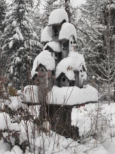 Clustered bird houses on an old tree stump / gardening / birds / winter