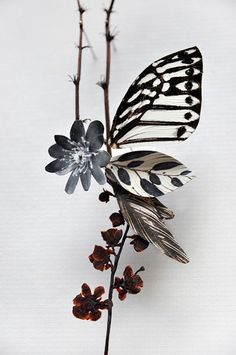 """Anne ten Donkelaar: """" Flower Constructions- collage of cutout flower prints and dried flowers. Butterfly Flowers, Diy Flowers, Paper Flowers, Butterflies, Bouquet Flowers, Flower Diy, Press Flowers, Drying Flowers, Butterfly Wings"""