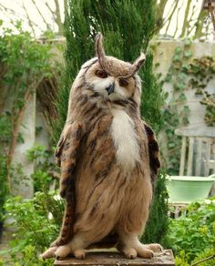 Eurasian Eagle Owl Striking A Pose