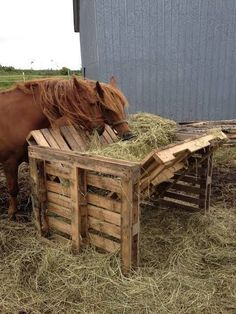 Horse feeder made from old pallets horse ranch life Hay Feeder For Horses, Horse Feeder, The Farm, Cabras Boer, Hotel Pet, Horse Shelter, Animal Shelter, Horse Ranch, Old Pallets