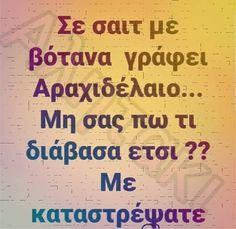 Funny Greek Quotes, Kai, Funny Memes, Jokes, Humor, Husky Jokes, Humour, Memes, Funny Photos