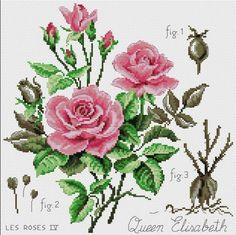 Etude a la rose (Queen Elizabeth) Cross Stitch Love, Cross Stitch Flowers, Cross Stitch Charts, Cross Stitch Patterns, Ribbon Embroidery, Cross Stitch Embroidery, Stitches Wow, Embroidered Roses, Satin Stitch