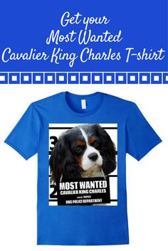 Most Wanted Cavalier King Charles T-shirt- Dog Tee Shirts -- 100% Cotton Imported.Machine wash cold with like colors, dry low heat.Anvil relaxed fit, blue 2 types (royal blue, navy blue), red, gray (asphalt), white, crew neck tee, sayings, quotes, unisex, man, women, girls, boys Lightweight, Classic fit, TearAway label, Double-needle sleeve and bottom hem.Dog Lover t shirts, Dog Mugshot t-shirts, Cavalier King Charles tee shirts, with graphics.4.5 oz 100% Combed Ringspun Cotton,