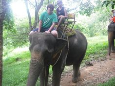 Thailand-Time for a rest, we'll let the elephants do all the work!!  #greatwalker