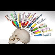 The life of a medical student (via medicalopedia)