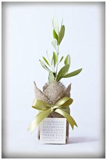 Plant bomboniere ... what a beautiful idea