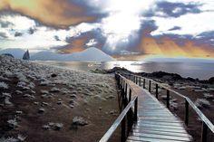 https://flic.kr/p/4FBn83 | Galapagos 2008-04-01 17:01 0133 | On explore: April 18th, 2008, #463