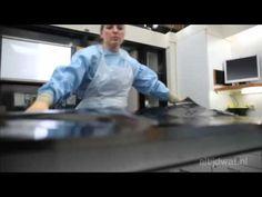 Altijd Wat - Werk: Frank van de Goot (Forensic Pathologist) - YouTube (In Dutch)