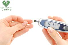 Did you know that #Cannabis(Marijuana) helps improve blood sugar control and helps in weight loss?  Also it appears to improve carbohydrate metabolism in users of marijuana.Go through the link: http://www.connect2canna.com/patients/