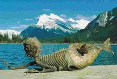 Is this evidence of the mer-monster that once lived in Banff's Lake Minnewanka?