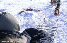 arctic haven nunavut
