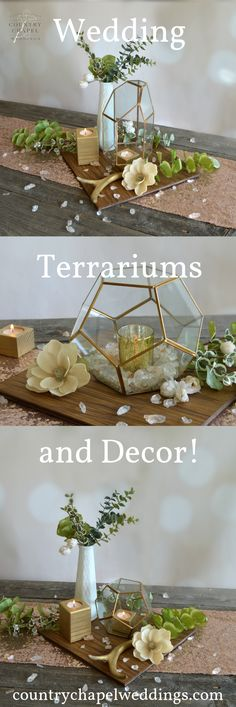 Shop terrariums for wedding centerpieces and other insta-worthy decor for your b. Shop terrariums for wedding centerpieces and other insta-worthy decor for your best day ever! Spring Wedding Decorations, Rustic Wedding Centerpieces, Wedding Ideas, Terrarium Wedding, Geometric Decor, Chapel Wedding, Best Day Ever, Terrariums, Paper Flowers