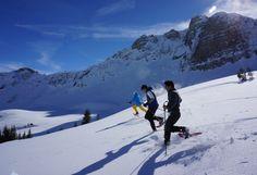 Schneeschuh Incentive Vorarlberg (c) Aktivzentrum Bregenzerwald Team Building, Mount Everest, Mountains, Nature, Wonderland, Travel, Outdoor, Snowshoe, Hiking