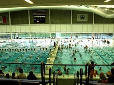 The Aquatic Center at Flushing Meadows Corona Park (GMAP) is home to a gigantic, 25M by 50M swimming pool, the first indoor public pool built in the city for more than 40 years. While it was built as part of a failed bid by the city to host the Olympics, the pool has certainly become [...]
