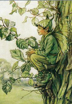 Cicely Mary Barker, Elm Tree Fairy (detail) ^
