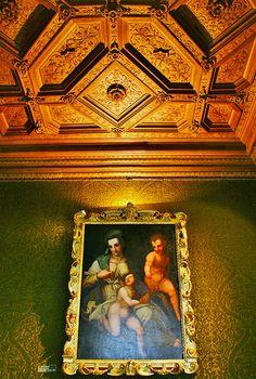 Chateau de Chenoceau interior ceiling