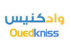 موقع واد كنيس للبيع والشراء Ouedkniss Nintendo Wii, Logos, Logo