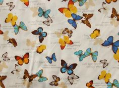 yellow and blue butterflies