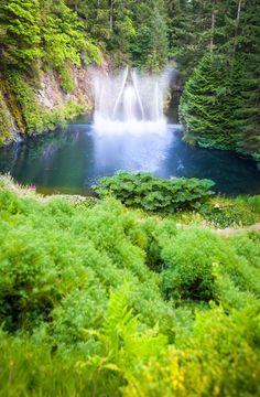 A waterfall at Butchart Gardens in Victoria, British Columbia. Victoria British, Naturally Beautiful, Creative Photography, Original Image, British Columbia, Natural Beauty, Waterfall, Gardens, River