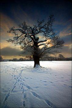 'Winter Sunrise' - Beaumaris, Anglesey  by Kristofer Williams
