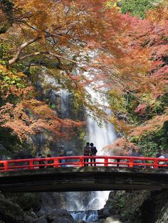 waterfall in #autumn #osaka #japan