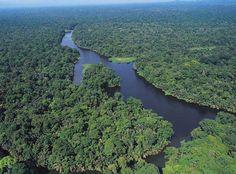 """Tortuguero, Costa Rica- """"region of turtles"""""""