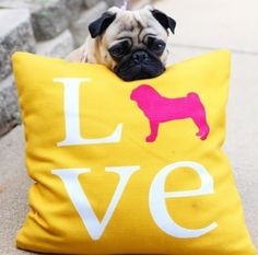 Pug Love pillow. Offered in 7 colors. Choose from 50+ dog breeds. Made in USA.