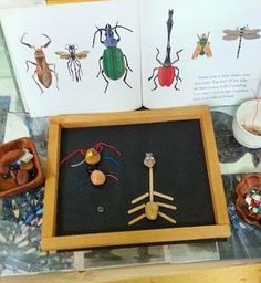STEM! Books & Insect Composition Studio for creative learning (via imagine learning center)