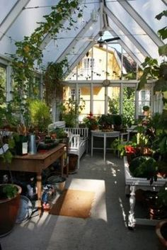 Green houses | fromglasgowwithlove