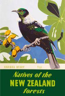 Tui on karaka tree New Zealand Art, Maori Tattoo Designs, Tourism Poster, Maori Art, Kiwiana, The Beautiful Country, Travel And Tourism, Vintage Travel Posters, Hummingbirds